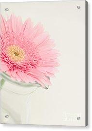 One Single Drop Acrylic Print by Kay Pickens