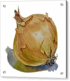 Onion Acrylic Print by Irina Sztukowski
