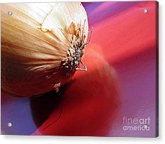 Onion Acrylic Print by Sarah Loft