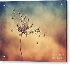 Only Acrylic Print by Diana Kraleva