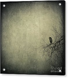 Only One Acrylic Print by Annie Lemay