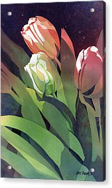 Only Three Tulips Acrylic Print by Kris Parins
