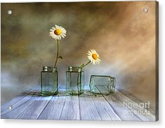 Only Two Acrylic Print by Veikko Suikkanen