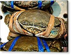 Ooh Crab Acrylic Print by Dean Harte