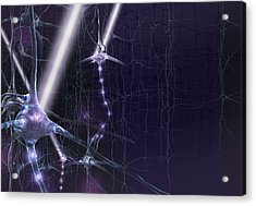 Optogenetics, Conceptual Artwork Acrylic Print by Science Photo Library