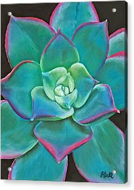 Opulence Acrylic Print by Laura Bell