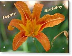 Orange Lily Birthday 1 Acrylic Print by Aimee L Maher Photography and Art Visit ALMGallerydotcom