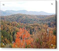 Orange Mountain Range Acrylic Print by Regina McLeroy