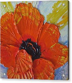 Orange Poppy Acrylic Print by Paris Wyatt Llanso