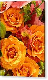 Orange Roses Acrylic Print by Amy Vangsgard