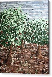 Orchard 4 Acrylic Print by Ric Bascobert