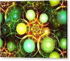 Organic Acrylic Print by Anastasiya Malakhova