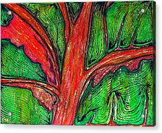 Organic Acrylic Print by Carla Sa Fernandes
