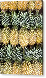 Organic Pineapple  Acrylic Print by Kevin Miller
