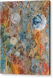 Organica Acrylic Print by David Raderstorf
