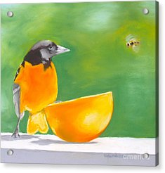 Oriole And The Orange Acrylic Print by Faythe Mills