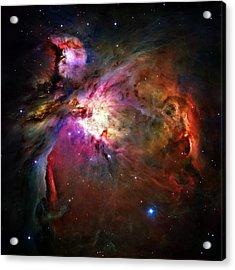 Orion Nebula Acrylic Print by Ricky Barnard