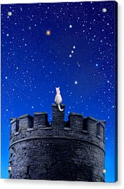 Orion Watch Acrylic Print by Kathleen Horner
