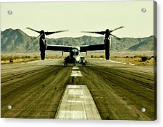 Osprey Takeoff Acrylic Print by Benjamin Yeager