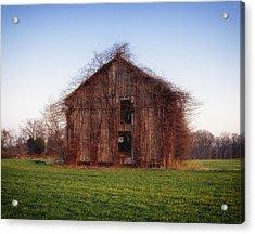 Overgrown Brush On Barn Acrylic Print by Mountain Dreams