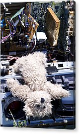 Overwhelmed By Technology Acrylic Print by William Patrick