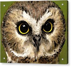 Owl Art - Night Vision Acrylic Print by Sharon Cummings