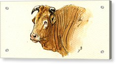 Ox Head Painting Study Acrylic Print by Juan  Bosco