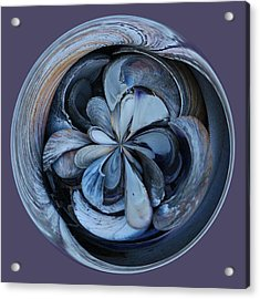 Oyster Shell Orb Acrylic Print by Paulette Thomas