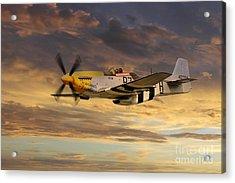 P-51 Ferocious Frankie Acrylic Print by J Biggadike