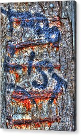 Paint And Rust 25 Acrylic Print by Jim Wright