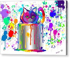 Paint Can Cat Too Acrylic Print by Nick Gustafson