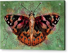 Painted Lady Acrylic Print by April Moen