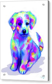 Painted Pup Acrylic Print by Nick Gustafson