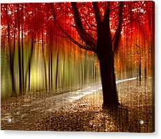 Painted With Light Acrylic Print by Jessica Jenney