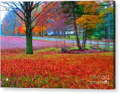 Painting Like Frontyard In Autumn Acrylic Print by Tina M Wenger