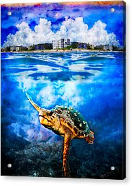 Palm Beach Under And Over Acrylic Print by Debra and Dave Vanderlaan