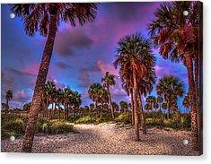 Palm Grove Acrylic Print by Marvin Spates