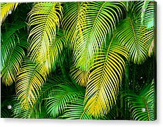 Palm Leaves In Green And Gold Acrylic Print by Karon Melillo DeVega