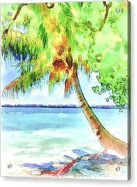 Palm Tree Acrylic Print by Yury Malkov