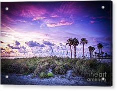 Palms On The Beach Acrylic Print by Marvin Spates
