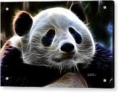 Panda - 4934 - F Acrylic Print by James Ahn