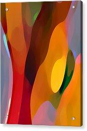 Paradise Found 3 Tall Acrylic Print by Amy Vangsgard