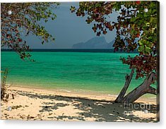 Paradise Found Acrylic Print by Adrian Evans