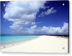 Paradise Acrylic Print by Laura Hiesinger