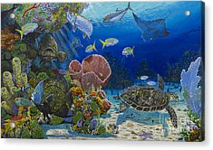 Paradise Re0012 Acrylic Print by Carey Chen