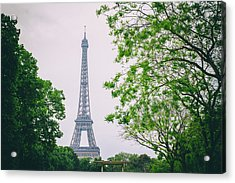 Paris Eiffel Surrounded By Trees Acrylic Print by Georgia Fowler
