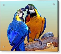 Parrot Passion 2 Acrylic Print by Linda  Parker