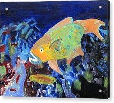 Parrotfish #1 Acrylic Print by Meredith Kopelman
