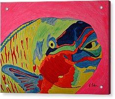 Parrotfish Acrylic Print by Tony Baker