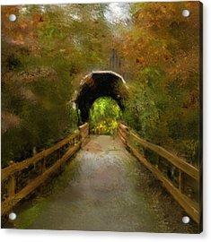 Pass Creek Bridge Acrylic Print by Dale Stillman
